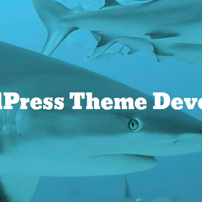 Screenshot: Chapter 6: WordPress Theme Development