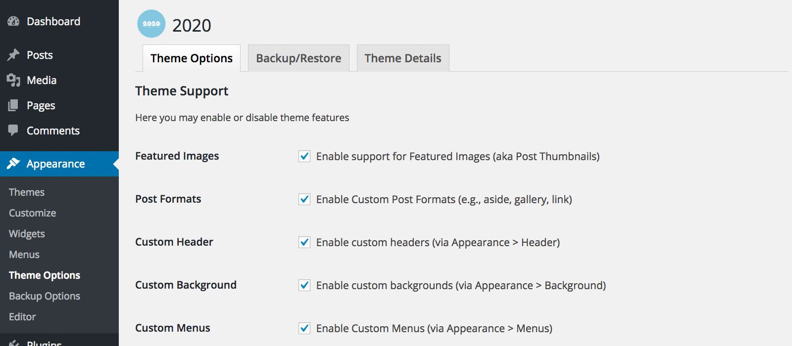 Screenshot: 2020 Theme: Theme Settings
